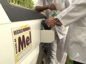 Mel de abelha é transformado em álcool para veículo no interior da Bahia (Foto: Reprodução/TV Sudoeste)