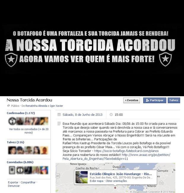 Montagem Campanha Botafogo (Foto: Reprodução)