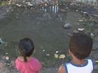 Peixes vivem em poça de água em rua de Boa Vista; 'nascente', diz biólogo