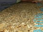 Jovens são presos com comprimidos de ecstasy em Votuporanga