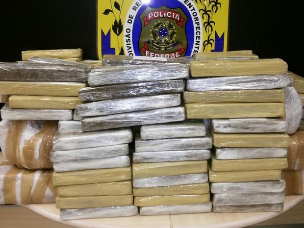 Apreensão 256kg de maconha Bahia (Foto: Divulgação/Polícia Federal)