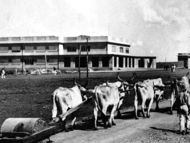 Carros de boi passavam pela Praça Cívica na década de 1930, em Goiânia, Goiás (Foto: Arquivo/TV Anhanguera)