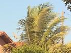 Com ventos de 13,4 km/h, Colina tem correntes de ar mais fortes em SP