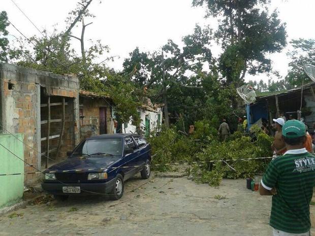 Incidente ocorreu na manhã do domingo (13) em Itaporanga D'Ajuda (Foto: Tenente Caldas / CBMSE)