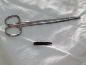 Pedaço do punhal tinha cerca de 7 cm (Foto: Natália de Oliveira/G1)