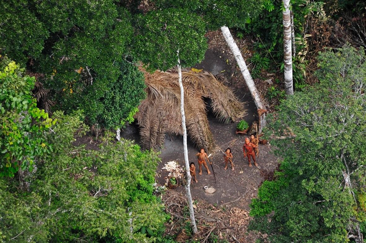 Imagem de helicóptero de tribo isolada no Amazonas (Foto: G. Miranda/FUNAI/Survival)