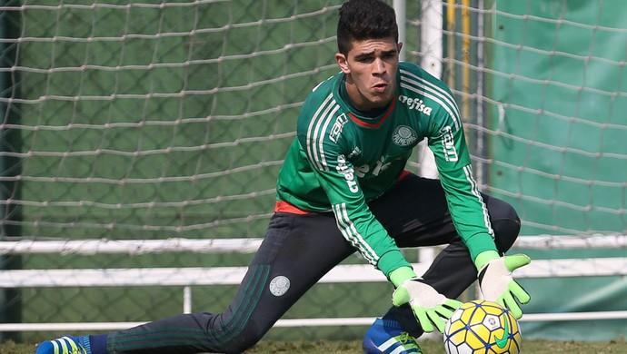 Vinicius Silvestre Palmeiras (Foto: Cesar Greco / Ag. Palmeiras / Divulgação)