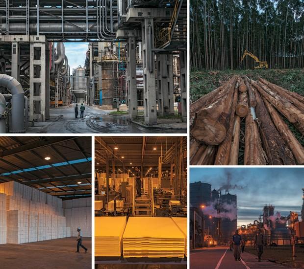 As fábricas, como a de Aracruz (à esq.), funcionam 24 horas por dia, o corte do eucalipto é mecanizado, a celulose é produzida em folhas e embalada para exportação   (Foto: Fabiano Accorsi)