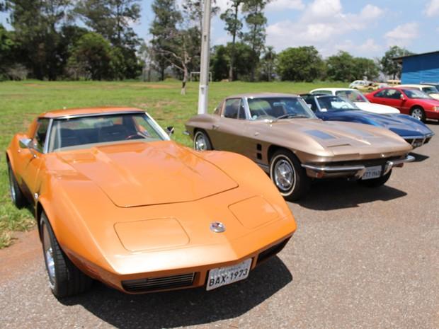 Organizadores esperam reunir cerca de 300 carros antigos no encontro deste sábado (Foto: Michele Rocha Calazans/Divulgação)
