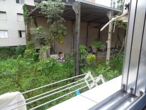 Terreno fica localizado ao lado de um edifício em São Vicnete  (Foto: Carolina Souza/VC no G1)