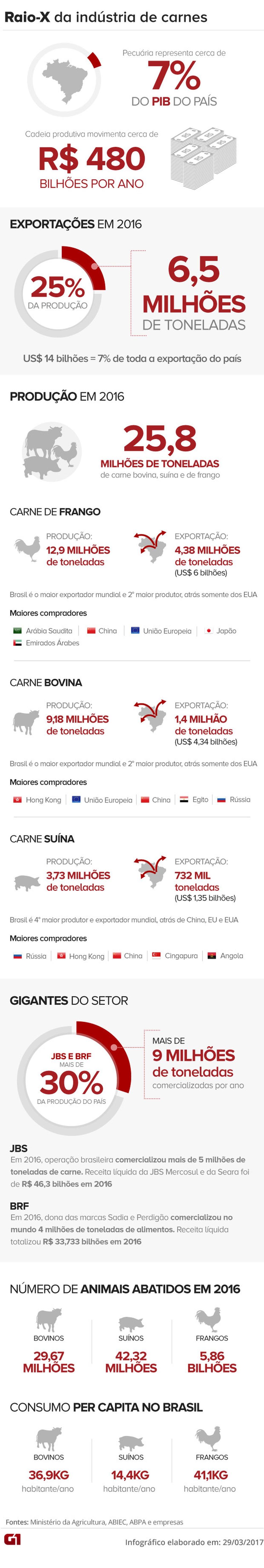 Veja números do setor de carnes e peso na economia (Foto: Arte G1)