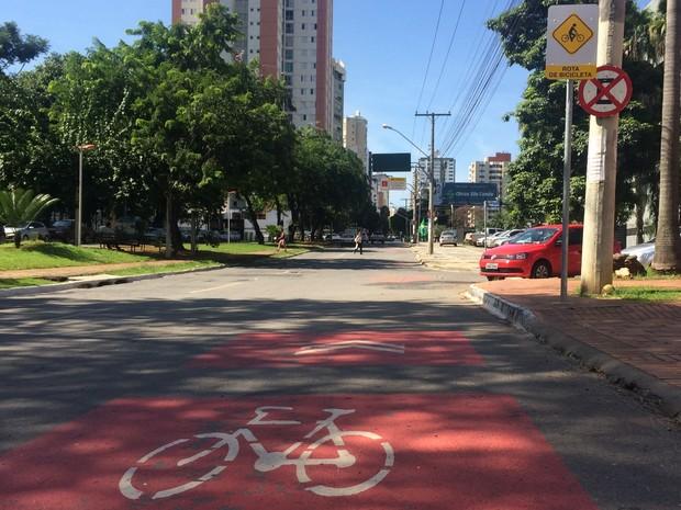 Ciclorrota é bem sinalizada, mas carros ainda desrespeitam bicicletas, em Goiânia, Goiás (Foto: Vitor Santana/G1)