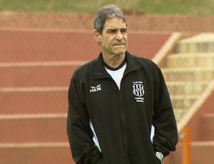 Sem capitão definido, Carpegiani quer jogadores dividindo liderança
