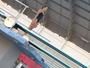 Bruna Brunnett sonha em conseguir vaga olímpica nos saltos ornamentais