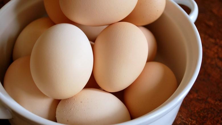 ovos-aves-granja (Foto: Brianna Lehman/CCommons)