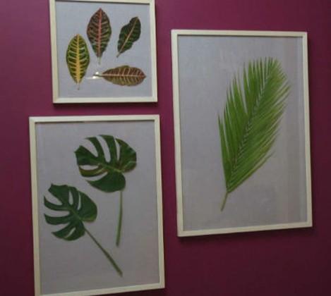 Mais cor por favor - quadro de plantas
