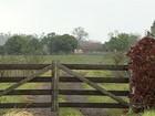 Em MS, polícia apoia técnicos para vacinar gado em fazendas com índios