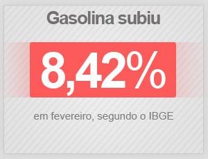 Gasolina subiu 8,42% em fevereiro de 2015, segundo o IBGE (Foto: G1)