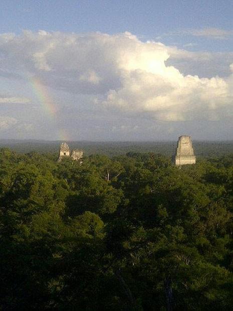 Centro arqueológico Tikal, na Guatemala, que abriga resquícios da civilização maia na América Central (Foto: Hellen Santos)