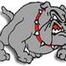 Bulldogs Security Suite