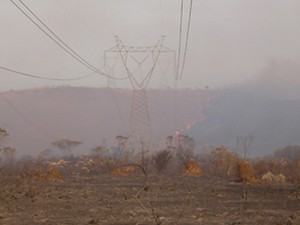 Incêndio fecha Parque da Serra da Canastra (Foto: ICMBio)
