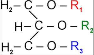 Estrutura geral de um trialcilglicerol (Foto: Wikipedia)