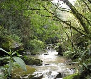 Vale das Pedras, em Santa Catarina (Foto: Divulgação)