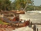 Maré alta avança sobre pista e derruba árvores no Marahu