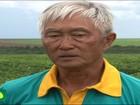 Plantio de soja em ritmo acelerado em Mato Grosso chega a 67% da área