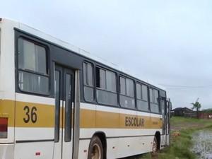 Ônibus ficou energizado ao receber descarga elétrica e motorista morreu no RS (Foto: Reprodução/RBS TV)
