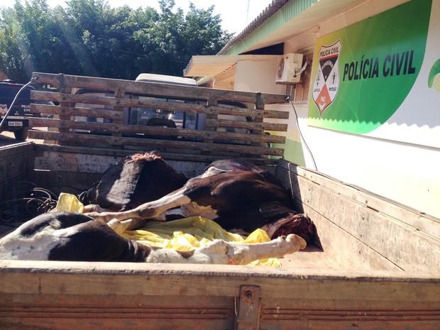 Vaca esquartejada e suspeitos foam levados para delegacia de Guajará (Foto: Júnior Freitas/ G1)