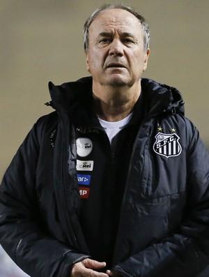 Levir Culpi Santos Fluminense (Foto: Marco Galvão / Estadão Conteúdo)