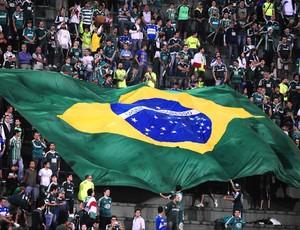 Palmeiras torcida (Foto: Marcos Ribolli)
