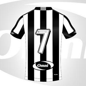 Botafogo patrocínio pontual (Foto: Divulgação / Botafogo)