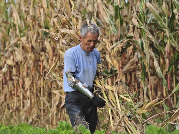 A prótese permite ao agricultor continuar trabalhando (Foto: Reuters/Sheng Li)