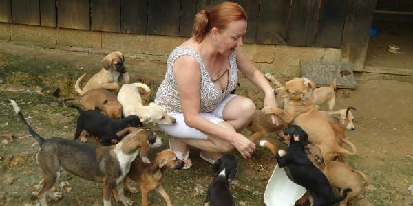 Lúcia dá abrigo a animais retirados das ruas (Foto: Divulgação/RBS TV)