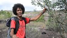Plantas medicinais de Igatu são usadas na cura de inflamações  (Divulgação TV Bahia)