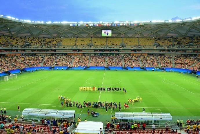 arena da amazônia (Foto: Joel Arthus)