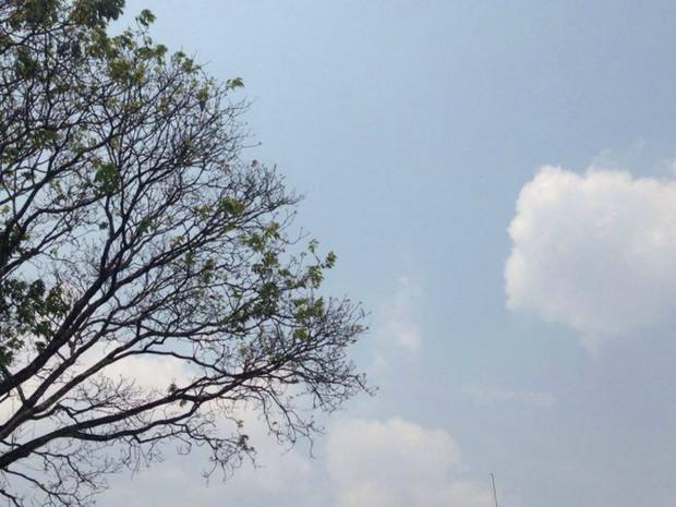 Dia ensolarado em Campo Grande, apesar de névoa seca encobrindo ar (Foto: Carla Salentim/G1 MS)
