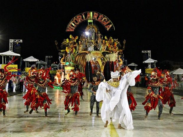 Vitória Régia desceu a avenida do samba com enredo homenageando os 130 anos da abolição da escravatura no Amazonas (Foto: Jamile Alves/G1 AM)