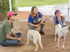 Universitárias criam projeto para resgatar animais abandonados