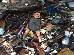 Lixo acumulado em manguezal da Baía de Guanabara  (Foto: Nicolás Satriano/G1)