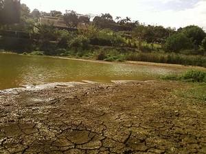 Associação de moradores denuncia nível baixo de lagoa e poços em chácaras do bairro Country Club, de Valinhos (Foto: Maria Anézia Zangiroli/VC no G1)