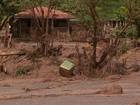 Produtores sofrem com prejuízos provocados pela lama em Mariana