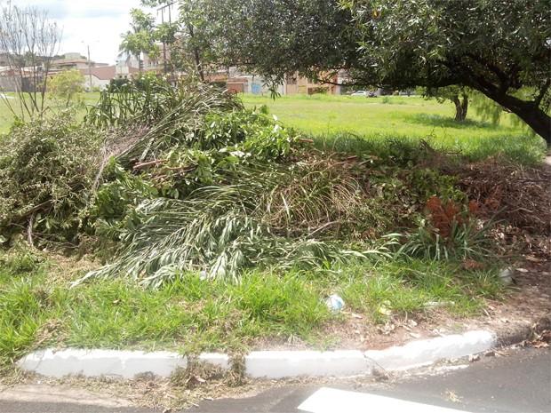 Internauta afirma que entulho é depositado em terreno no bairro Jardim Paulistano em Ribeirão Preto, há mais de um ano (Foto: James Pereira dos Santos/ VC no G1)