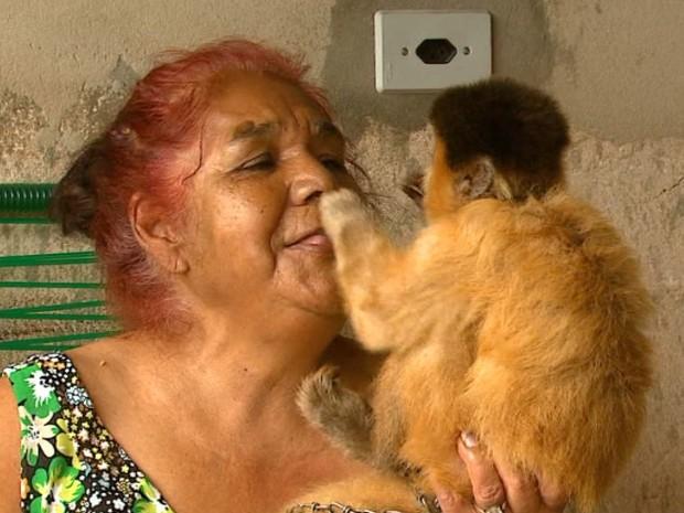 Dona do macaco Chico relembra como eram os carinhos trocados entre eles (Foto: Wilson Aiello/EPTV)
