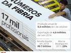 Maior exportadora de celulose do Brasil comemora alta do dólar