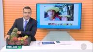 Equipe do Bom Dia MS ganha frutas de telespectador