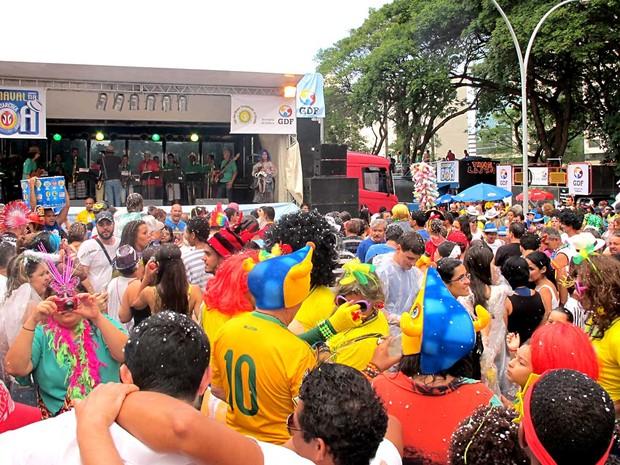Foliões se divertem durante apresentação da Orquestra Galinho, na abertura do carnaval 2014 em Brasília (Foto: Lucas Nanini/G1)