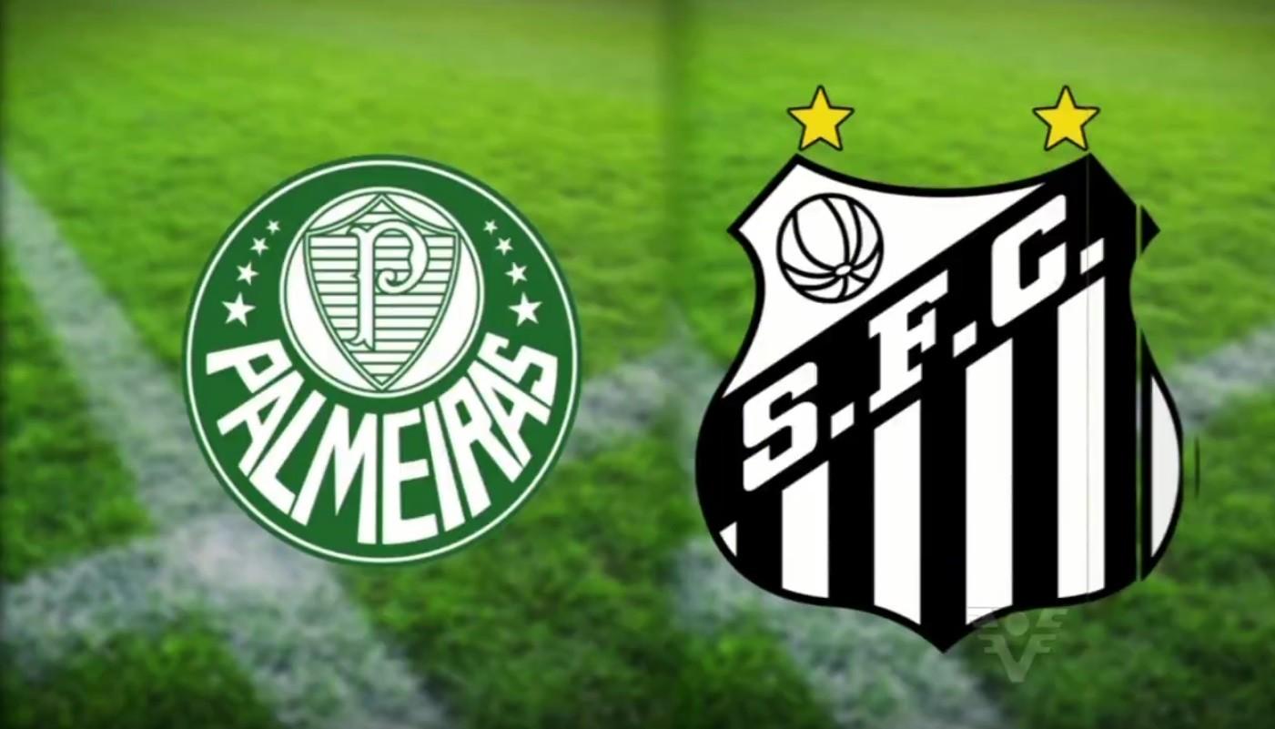 Palmeiras e Santos jogam pela final da Copa do Brasil (Foto: Reprodução/TV Tribuna)